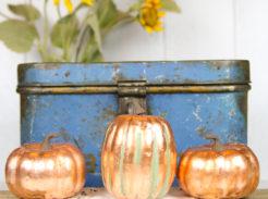 showing copper leaf pumpkins