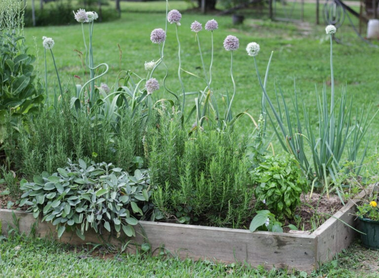 How To Build A Raised Garden Bed | Tutorial