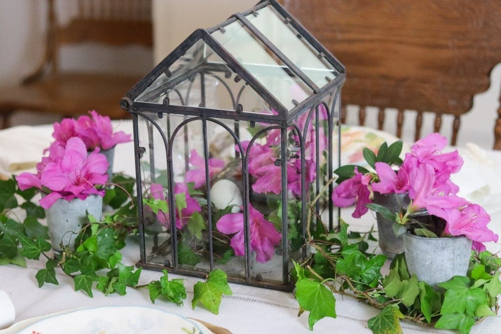 Spring table center piece with ivy and azaleas.